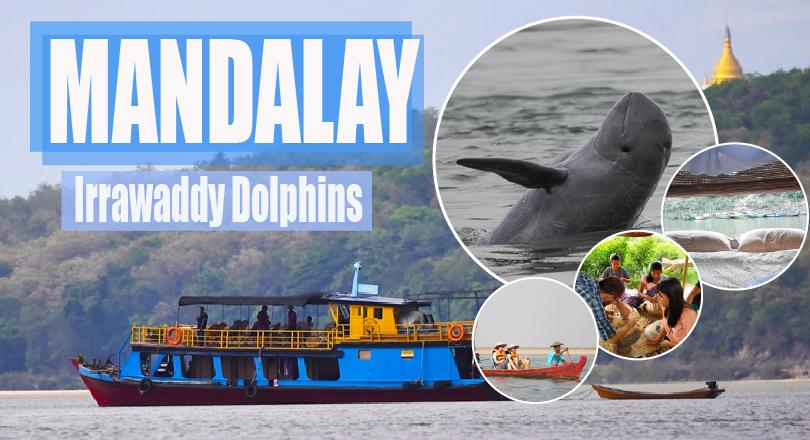 2 Days 1 night Irrawaddy Dolphins